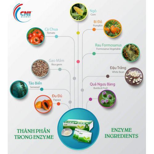 Organik , Enzymes .